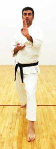 shotokan stances dachi