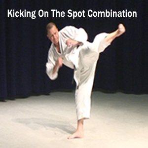 shotokan kicking drills