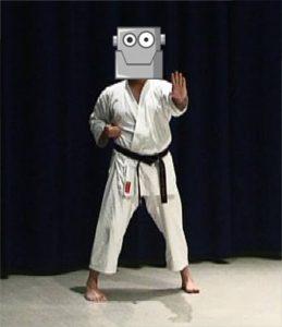learning karate