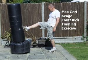 mae geri training exercise