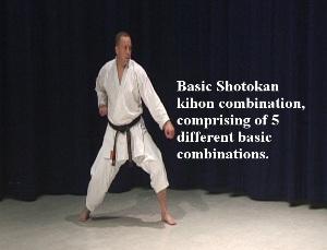 basic shotokan combinations