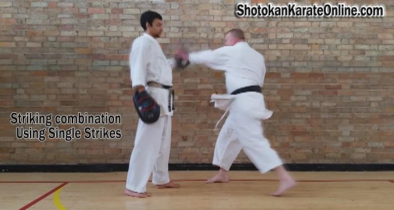 single karate strikes