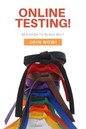 online karate testing