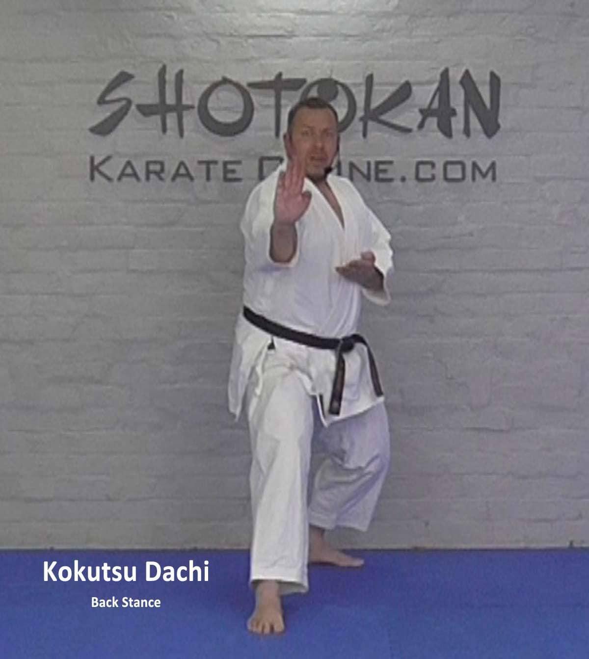 shotokan back stance