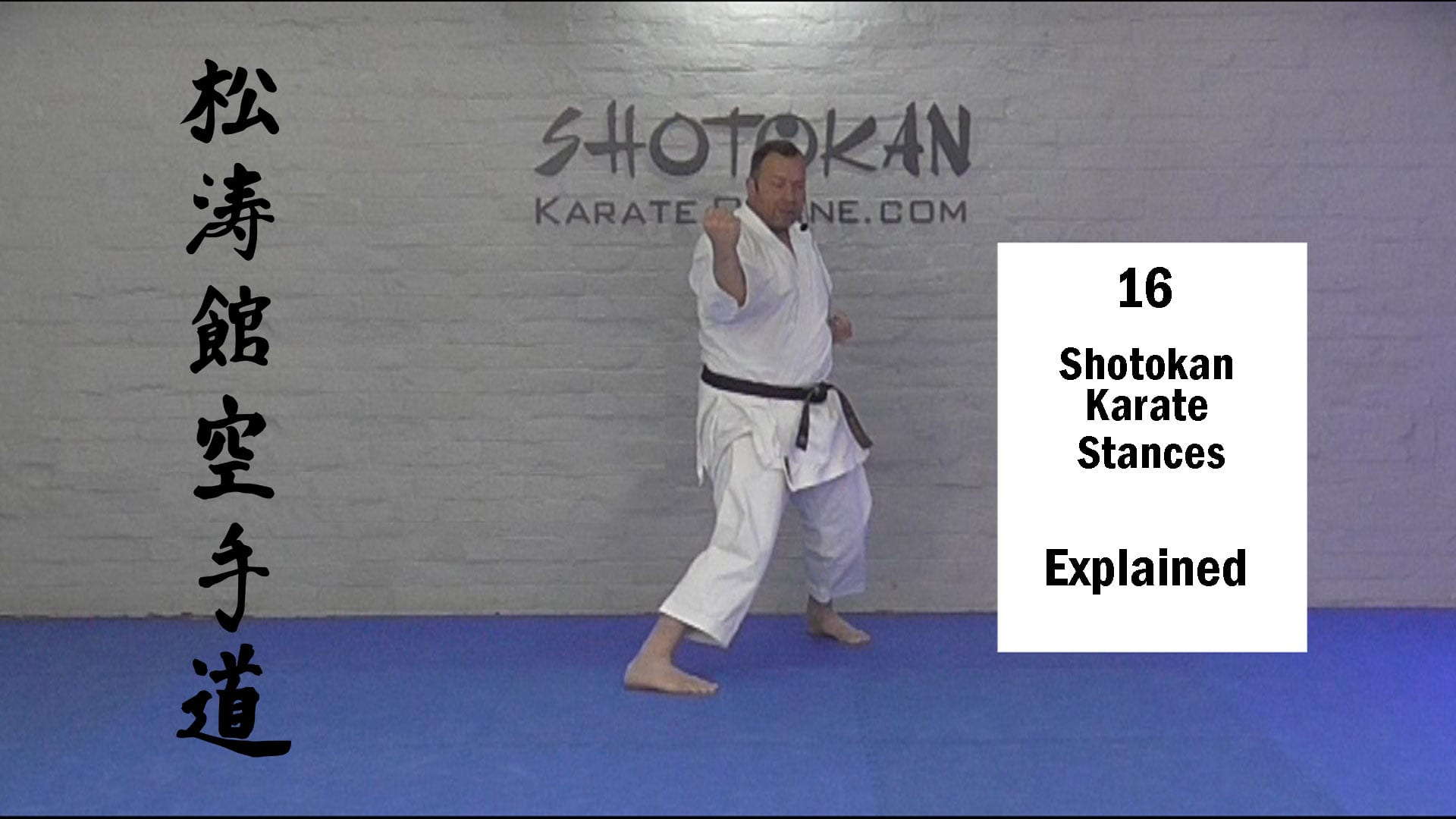 shotokan karate stances