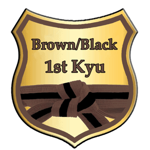 brown and black belt