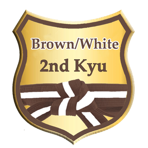 brown and white belt