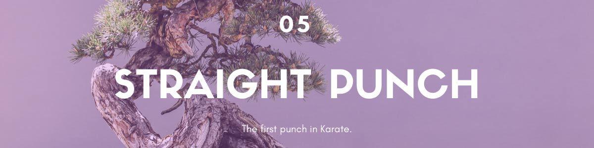 chokuzuki straight punch
