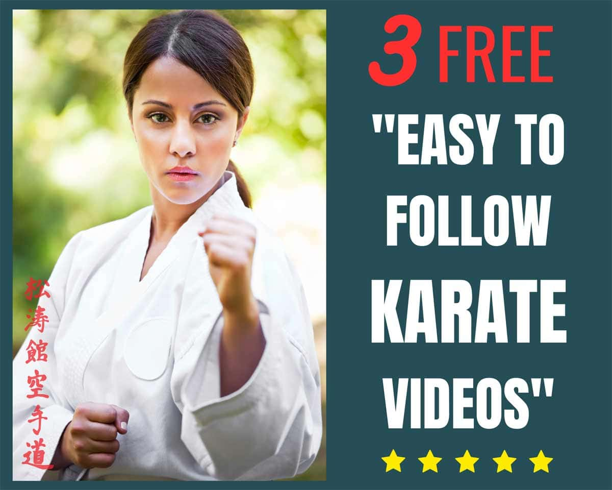 free karate videos
