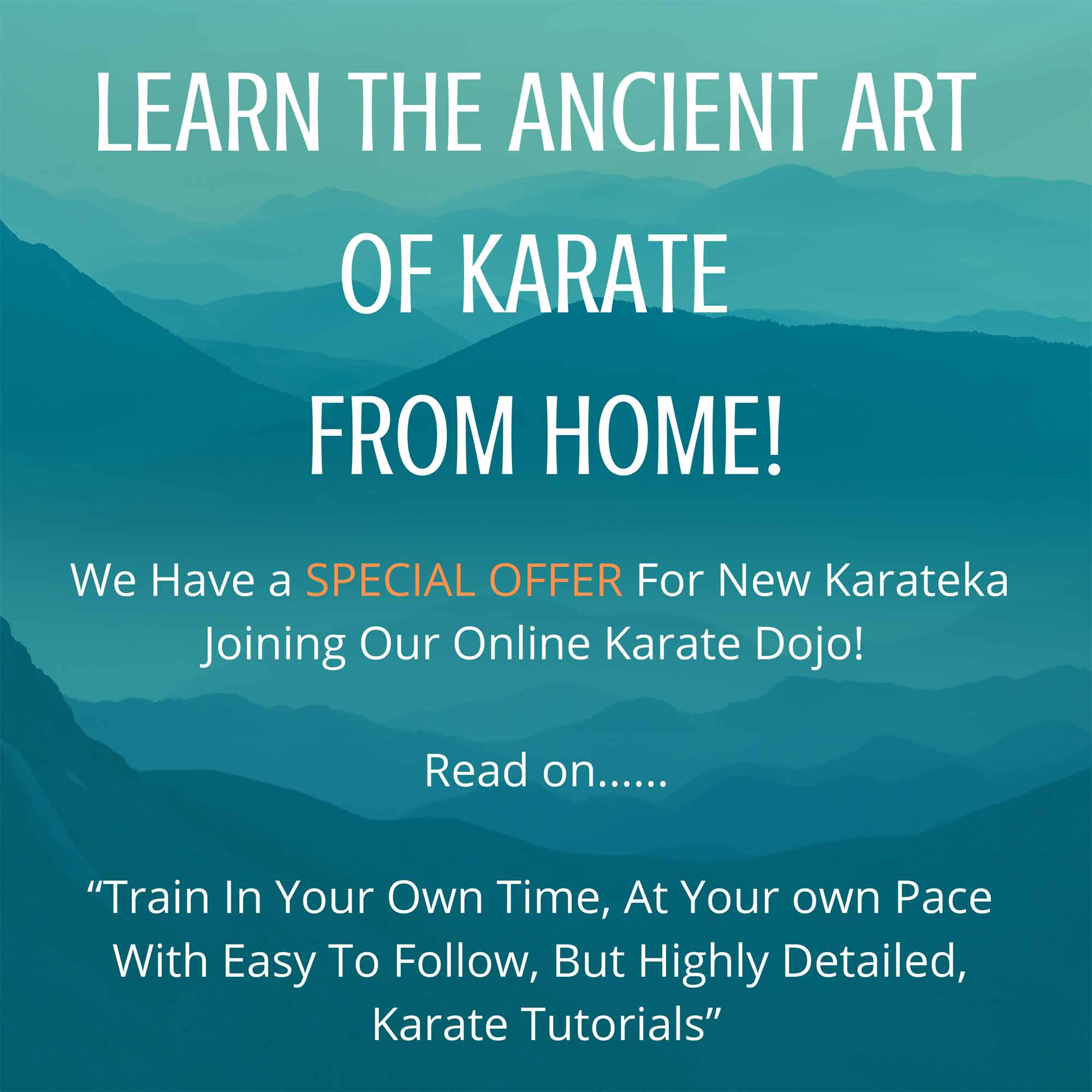 learn karate from home