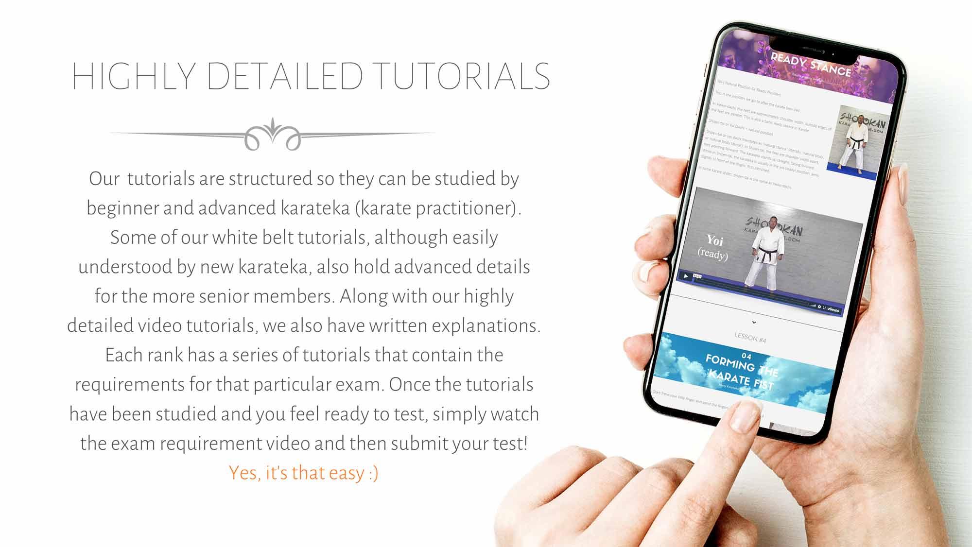 learn karate on mobile phone