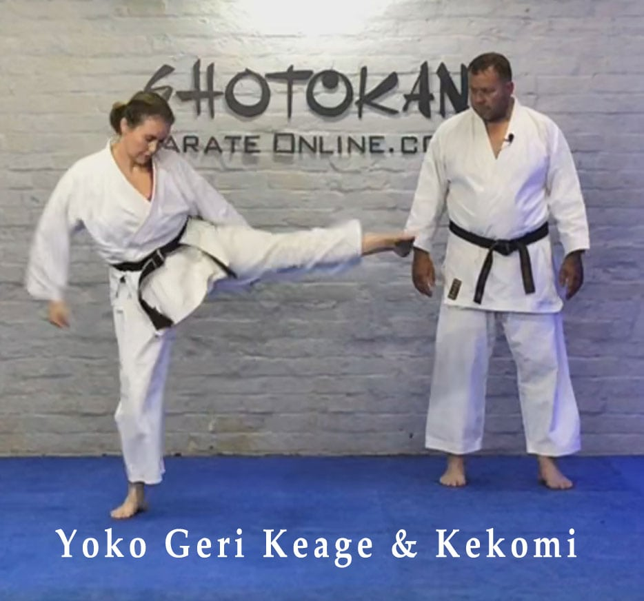 shotokan side kicks