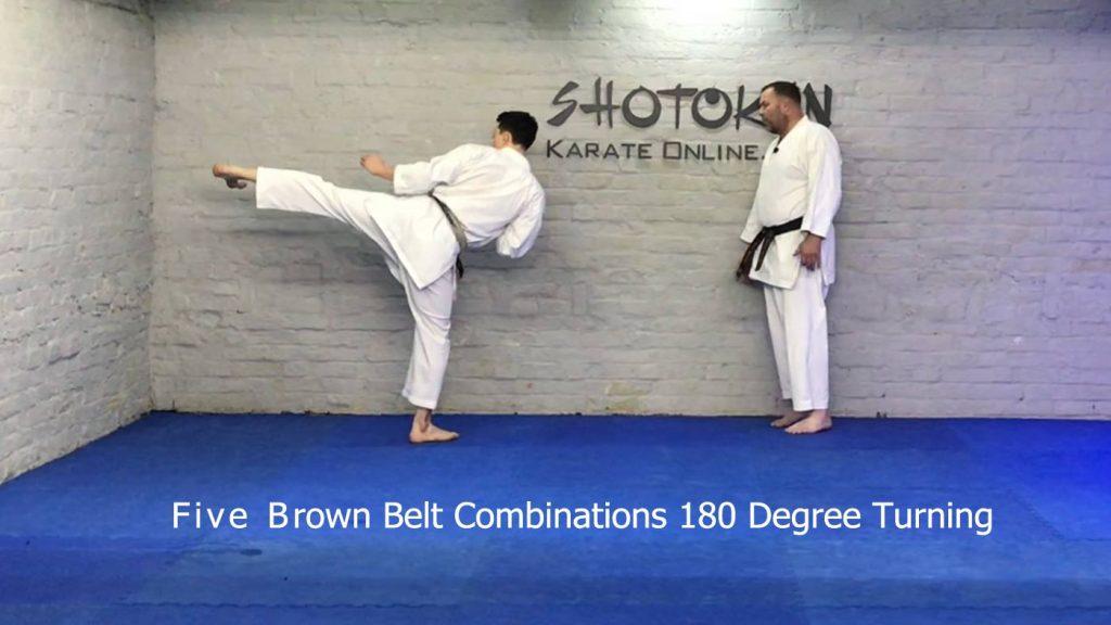 Brown Belt Combinations 180 Degree Turni