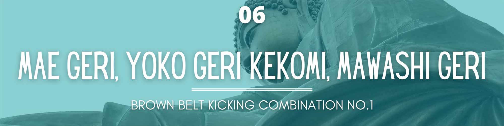 brown belt kicking combination 1