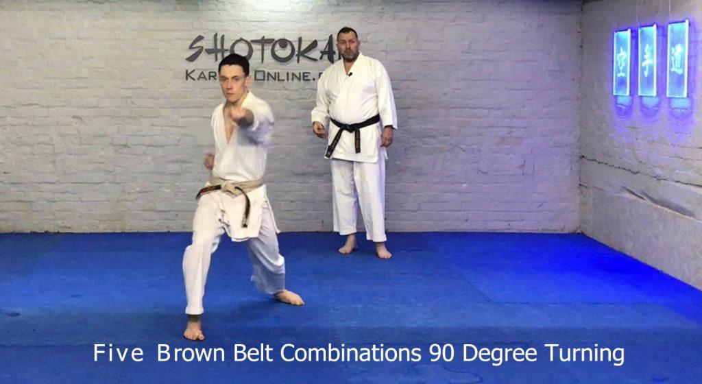 brown belt basics