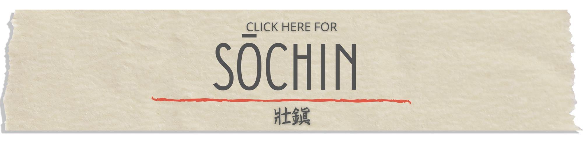 sochin tutorial