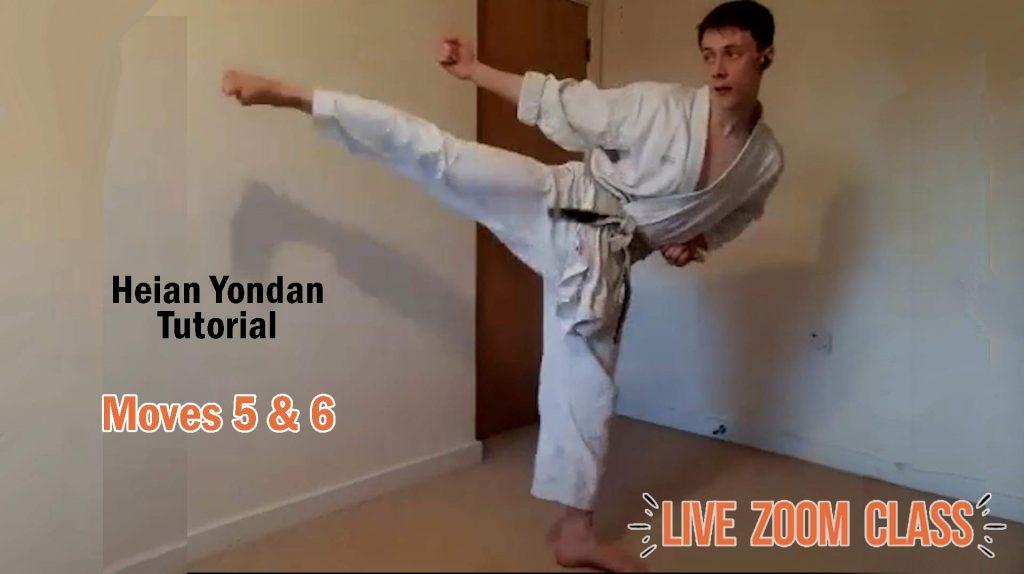 heian yondan side snap kicks