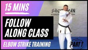 shotokan karate follow along class