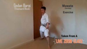live karate class