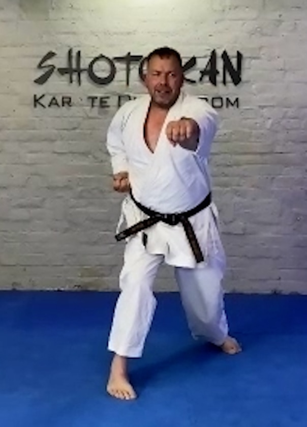 karate lessons online