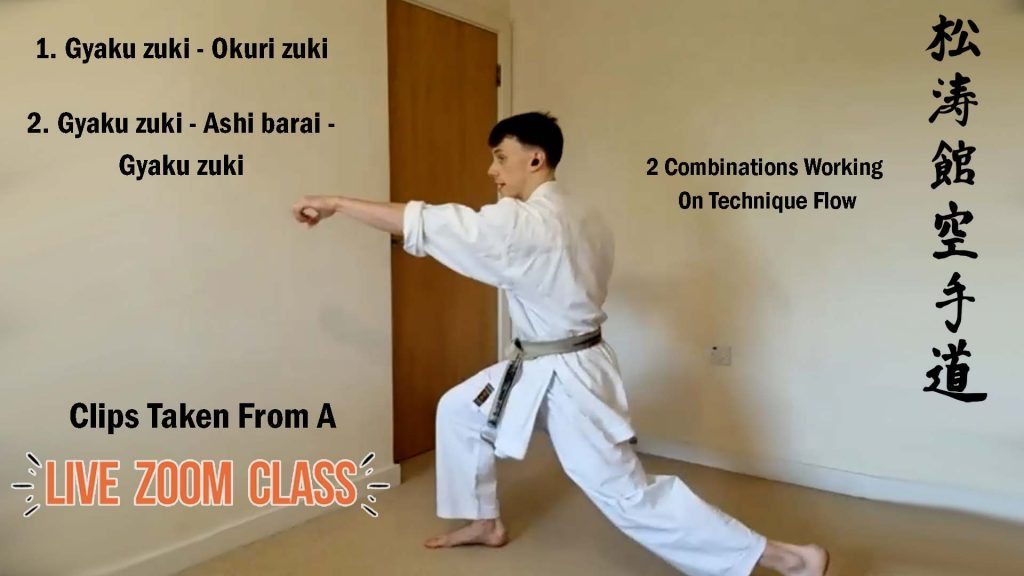 shotokan karate lessons online